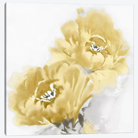 Flower Bloom In Yellow I Canvas Print #JES15} by Jesse Stevens Canvas Print