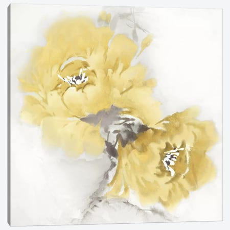 Flower Bloom In Yellow II Canvas Print #JES16} by Jesse Stevens Art Print