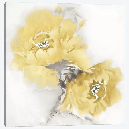 Flower Bloom In Yellow II Canvas Print #JES16} by Jesse Stevens Art Print