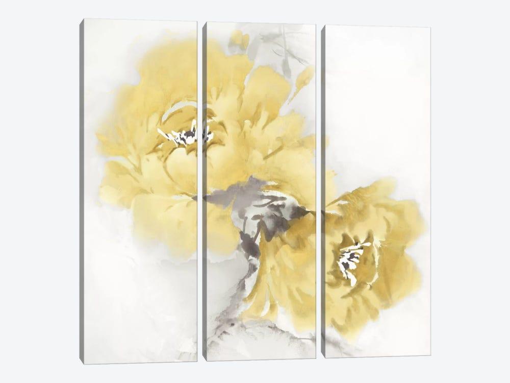Flower Bloom In Yellow II by Jesse Stevens 3-piece Canvas Art Print