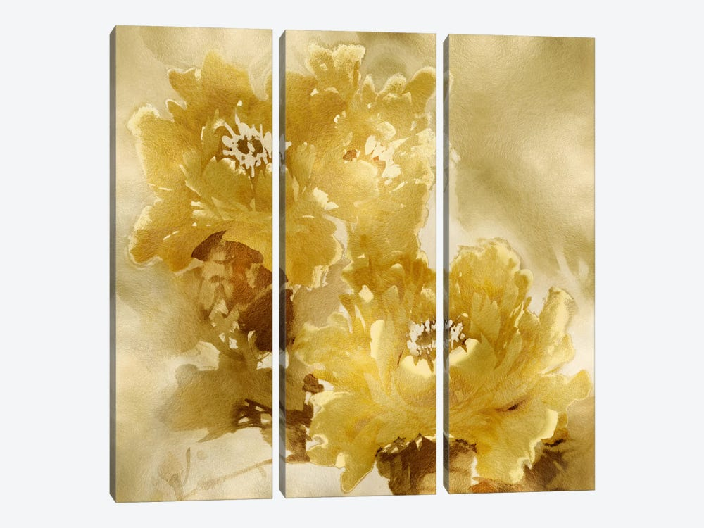 Flower Bloom On Gold I by Jesse Stevens 3-piece Canvas Wall Art
