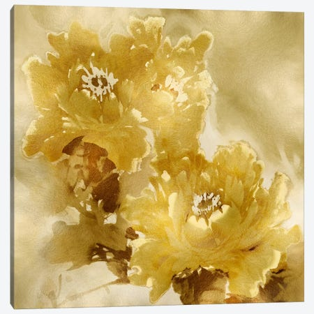 Flower Bloom On Gold I 3-Piece Canvas #JES17} by Jesse Stevens Canvas Art Print