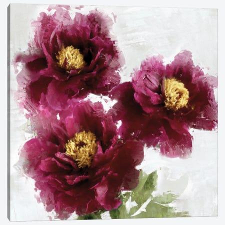Burgundy Bloom I Canvas Print #JES22} by Jesse Stevens Art Print