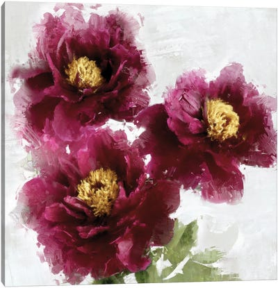 Burgundy Bloom I Canvas Art Print