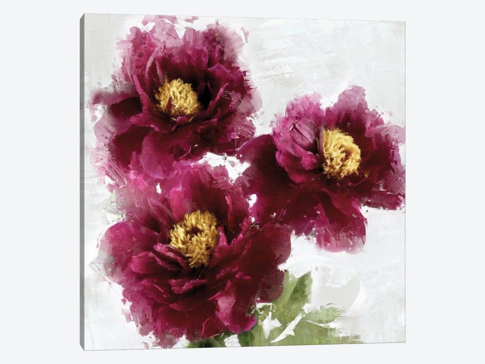 Burgundy Bloom I by Jesse Stevens 1-piece Canvas Wall Art