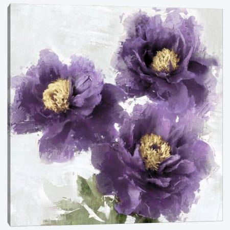 Purple Bloom II Canvas Print #JES23} by Jesse Stevens Canvas Art Print