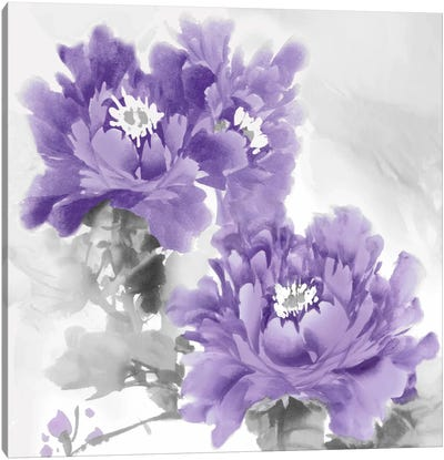 Flower Bloom In Amethyst I Canvas Print #JES5