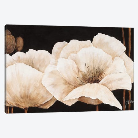 Amazing Poppies IV Canvas Print #JET10} by Jettie Roseboom Canvas Art Print
