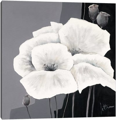 Decora II Canvas Art Print