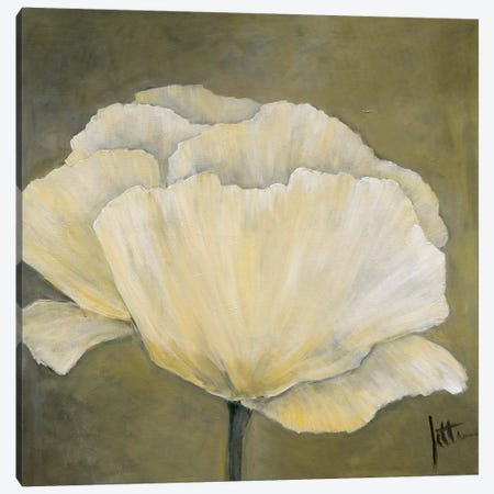 Poppy In White I Canvas Print #JET18} by Jettie Roseboom Canvas Art Print