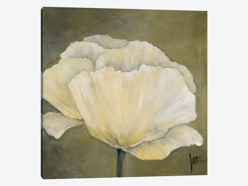 Poppy In White I by Jettie Roseboom 1-piece Canvas Wall Art