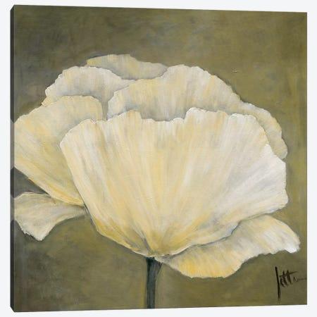 Poppy In White I Canvas Print #JET18} by Jettie Roseboom Canvas Art Print