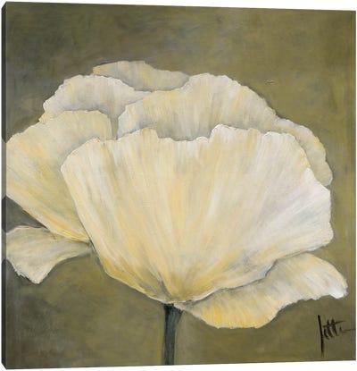 Poppy In White I Canvas Art Print