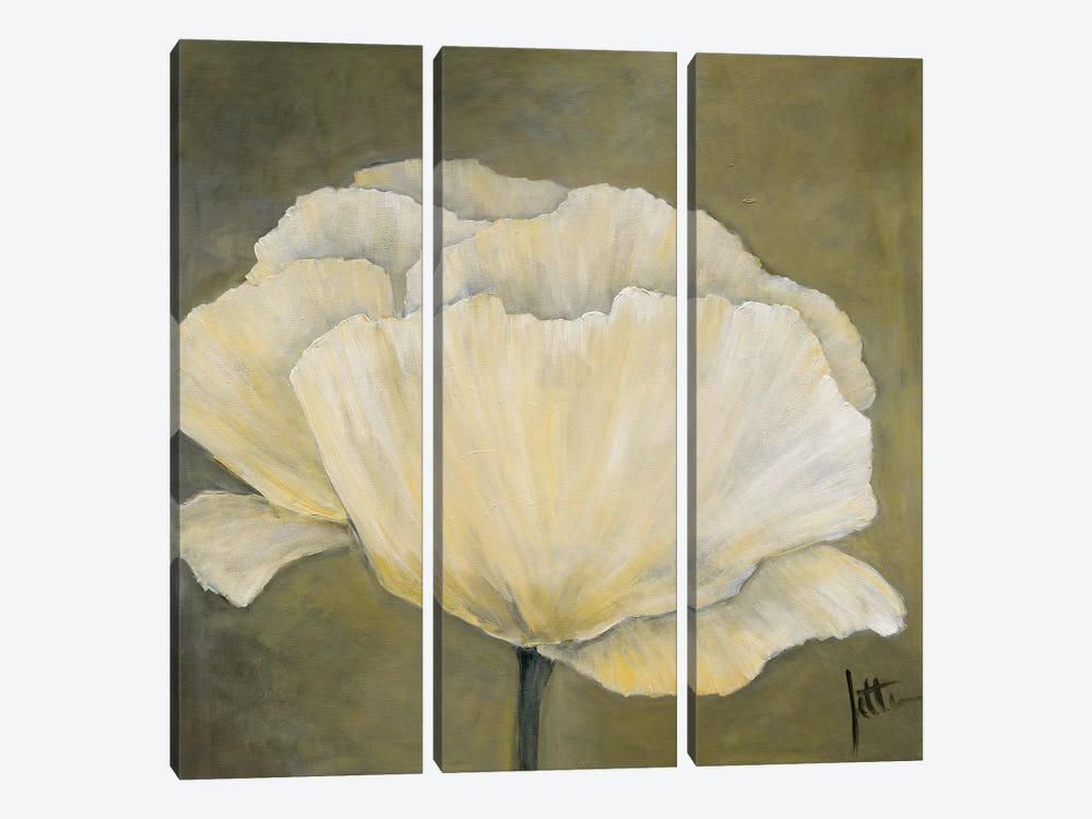 Poppy In White I by Jettie Roseboom 3-piece Canvas Artwork