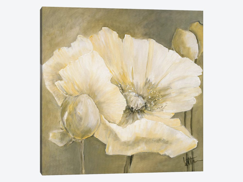 Poppy In White II by Jettie Roseboom 1-piece Canvas Print