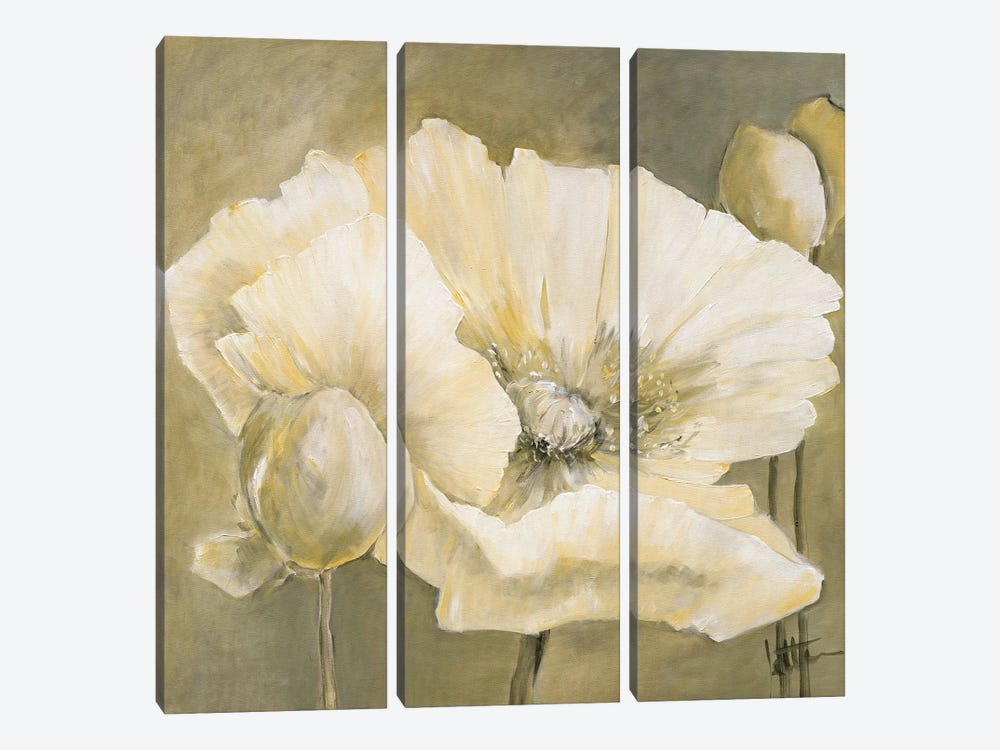 Poppy In White II by Jettie Roseboom 3-piece Canvas Art Print
