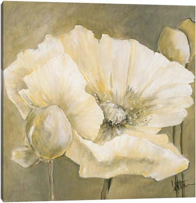 Poppy In White II Canvas Art Print
