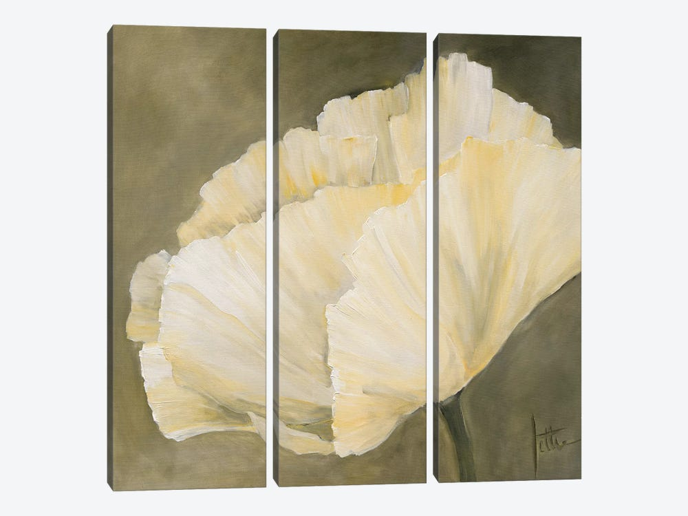 Poppy In White III by Jettie Roseboom 3-piece Canvas Art Print