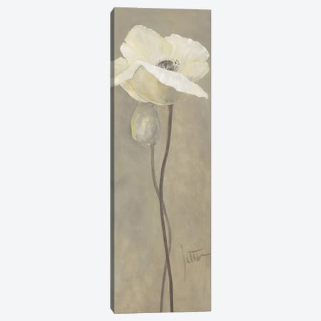 Poppy In White IV Canvas Print #JET21} by Jettie Roseboom Canvas Wall Art