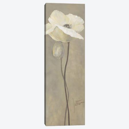 Poppy In White IV Canvas Print #JET21} by Jettie Roseboom Canvas Wall Art