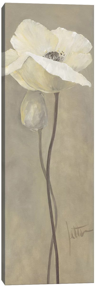 Poppy In White IV Canvas Art Print