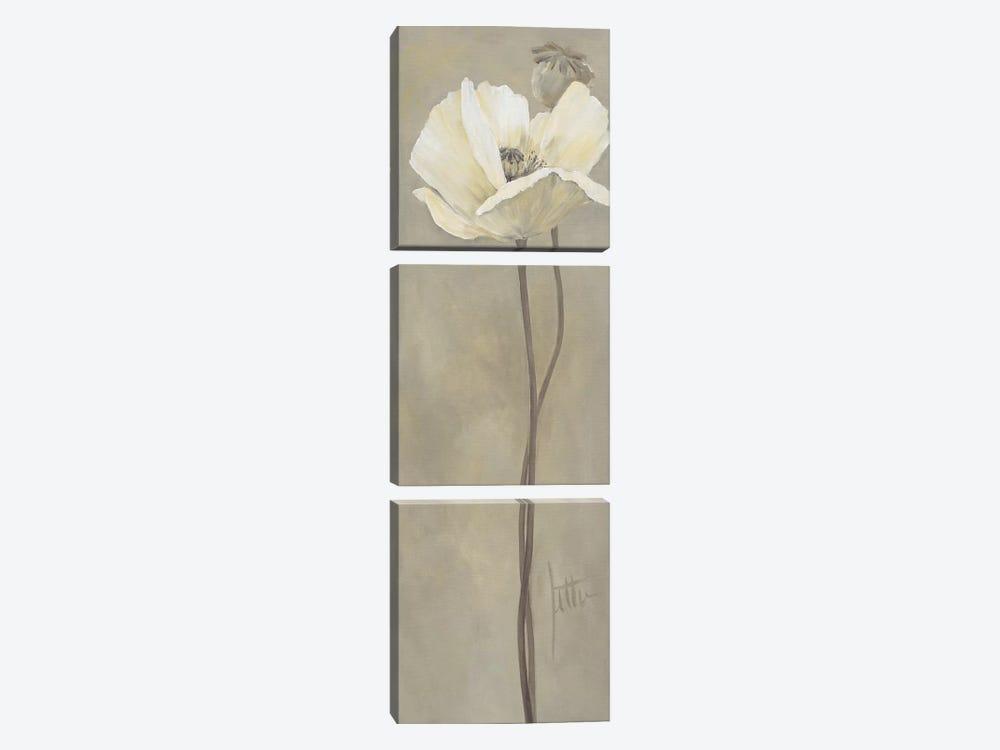 Poppy In White V by Jettie Roseboom 3-piece Canvas Print