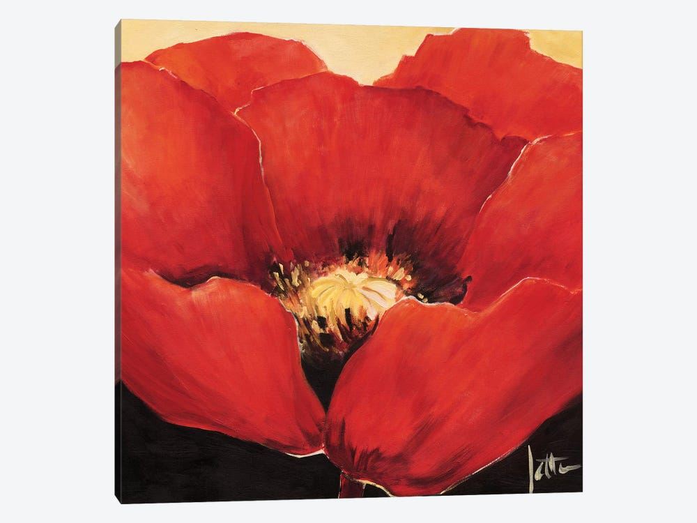 Red Beauty I by Jettie Roseboom 1-piece Canvas Art