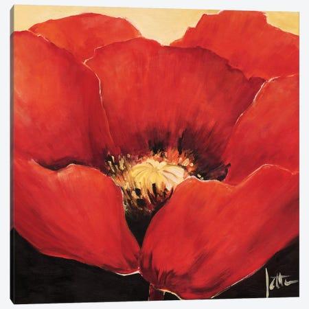 Red Beauty I Canvas Print #JET23} by Jettie Roseboom Canvas Art
