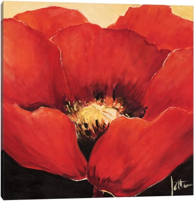 Red Beauty I Canvas Art Print