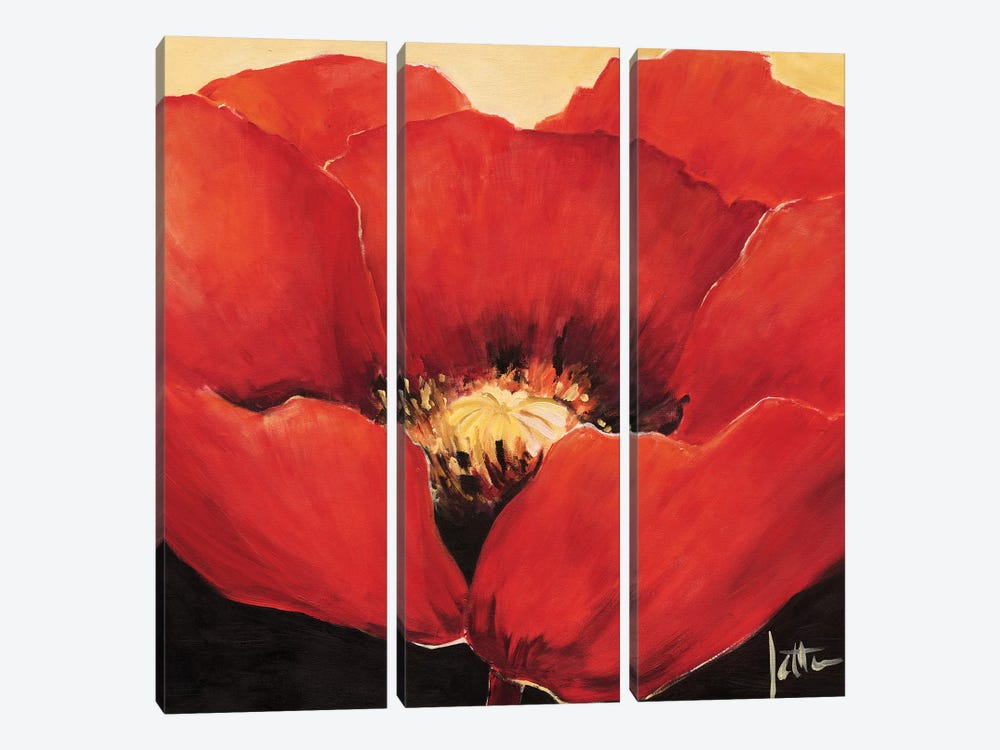 Red Beauty I by Jettie Roseboom 3-piece Canvas Wall Art