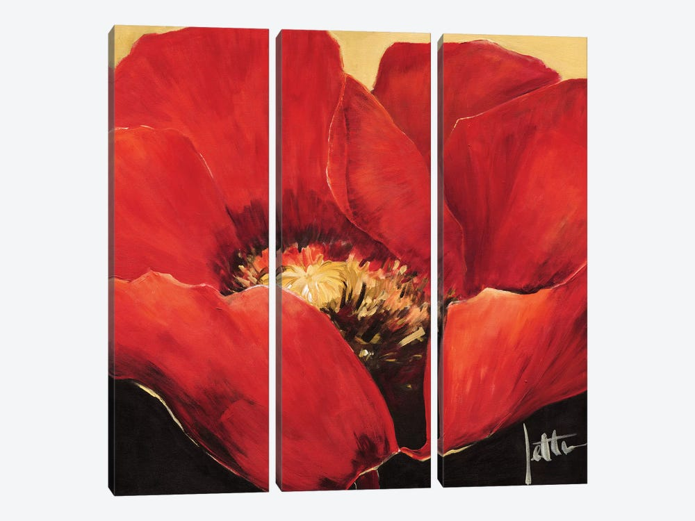 Red Beauty II 3-piece Canvas Print