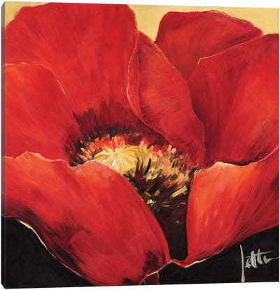Red Beauty II Canvas Art Print
