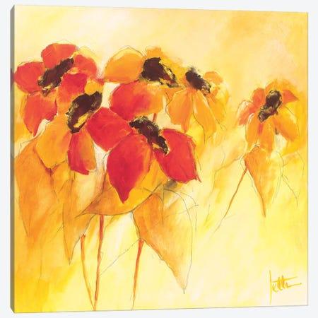 Sunshiny II Canvas Print #JET31} by Jettie Roseboom Canvas Art Print