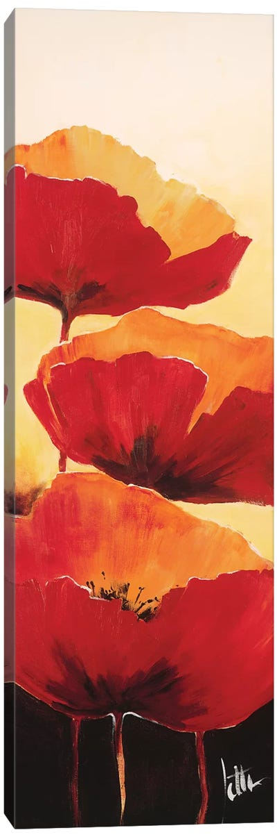 Three Red Poppies I Canvas Art Print