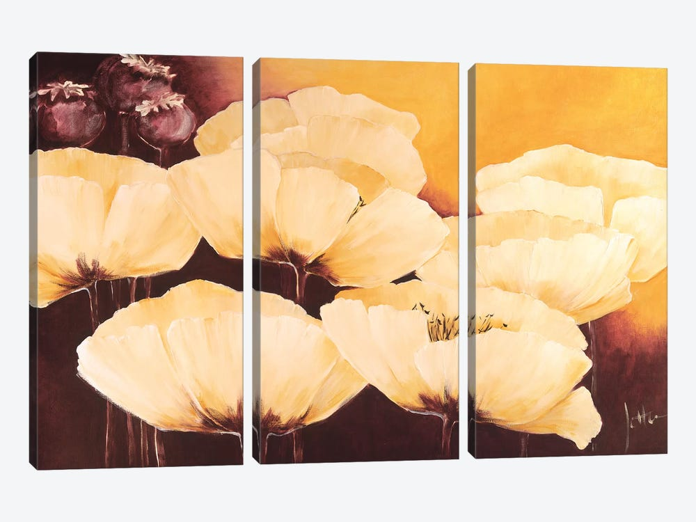 Yellow Poppies I by Jettie Roseboom 3-piece Canvas Art