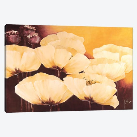 Yellow Poppies I Canvas Print #JET38} by Jettie Roseboom Canvas Print