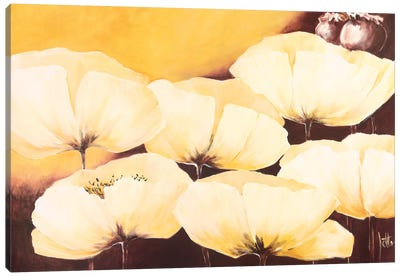 Yellow Poppies II Canvas Art Print