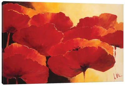 Absolute Beautiful I Canvas Art Print
