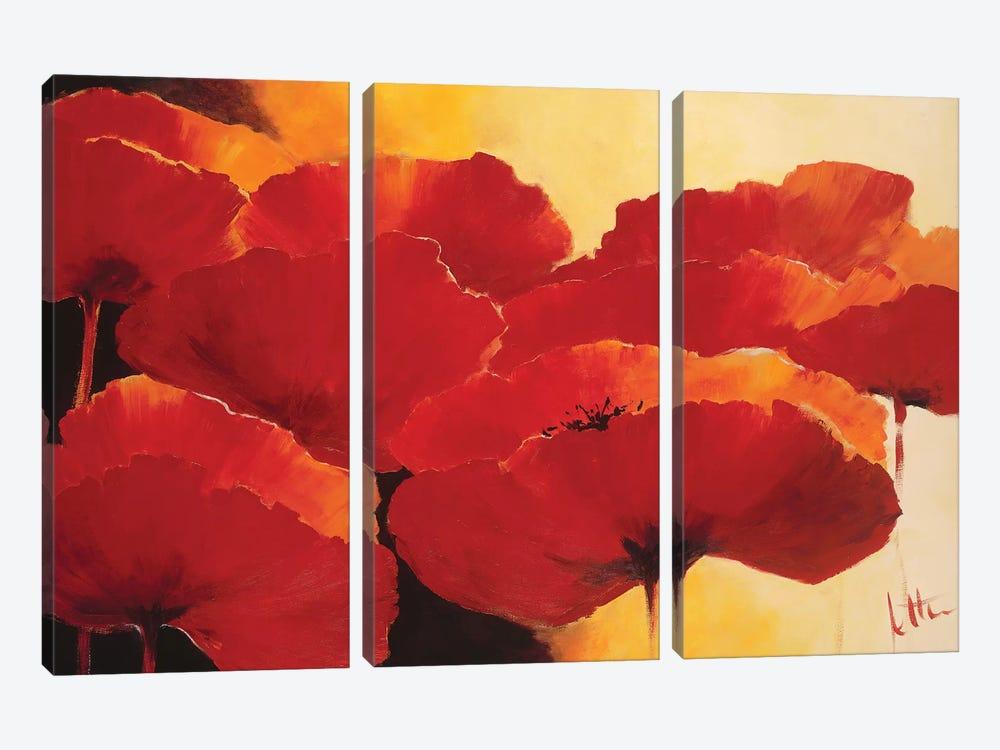 Absolute Beautiful I by Jettie Roseboom 3-piece Art Print