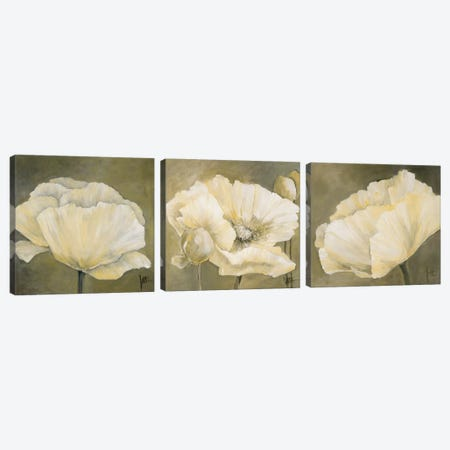 Poppy In White Triptych Canvas Print Set #JET3HSET002} by Jettie Roseboom Canvas Wall Art