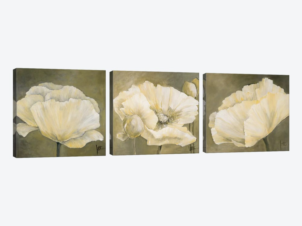 Poppy In White Triptych by Jettie Roseboom 3-piece Canvas Art Print
