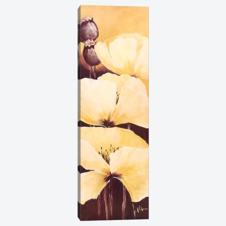 Yellow Poppies III Canvas Print #JET40} by Jettie Roseboom Canvas Art