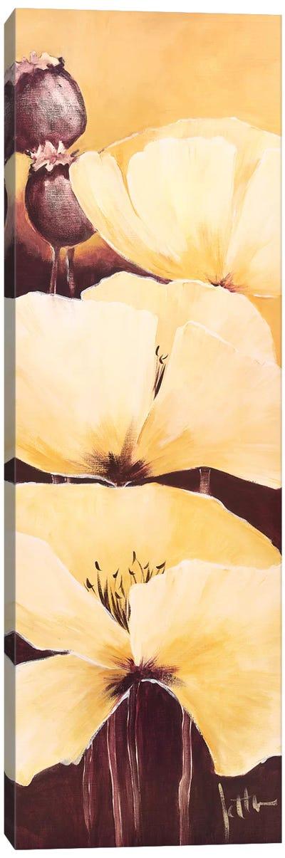 Yellow Poppies III Canvas Art Print