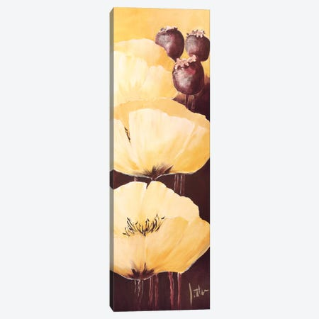 Yellow Poppies IV Canvas Print #JET41} by Jettie Roseboom Canvas Art