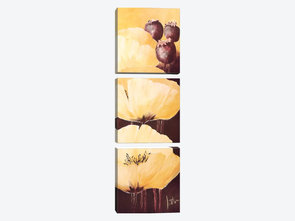 Yellow Poppies IV by Jettie Roseboom 3-piece Canvas Art