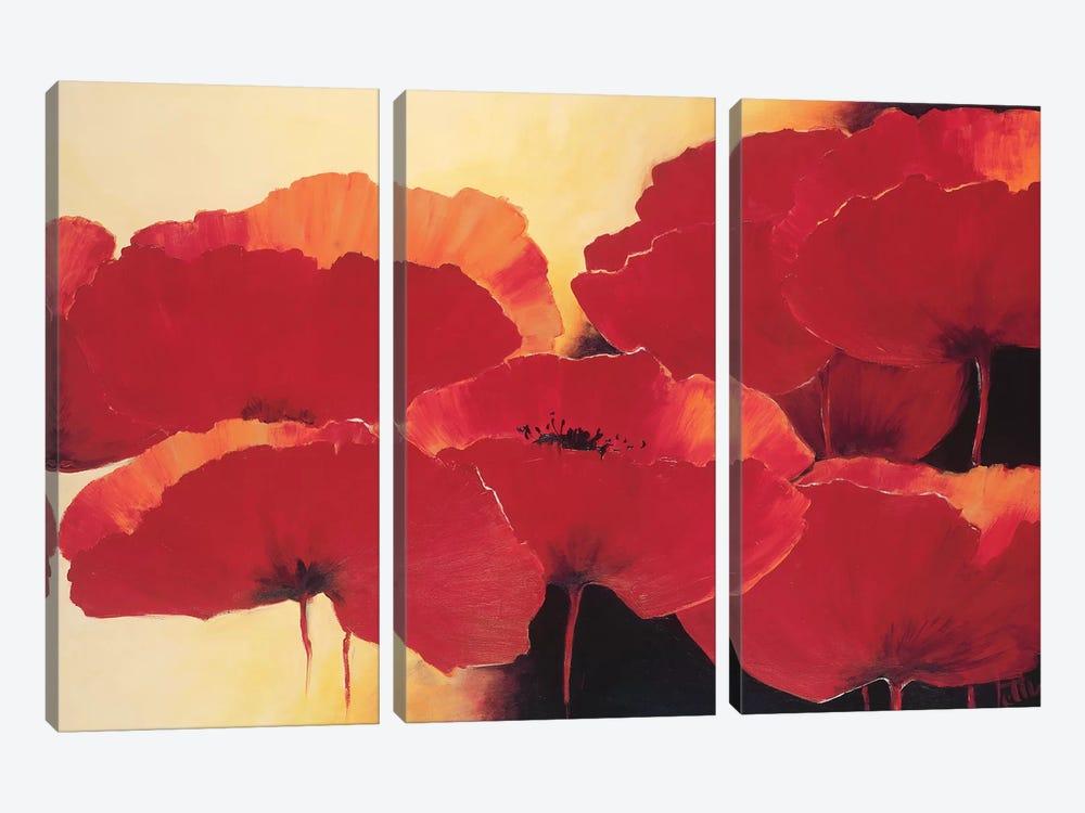 Absolute Beautiful II by Jettie Roseboom 3-piece Canvas Wall Art