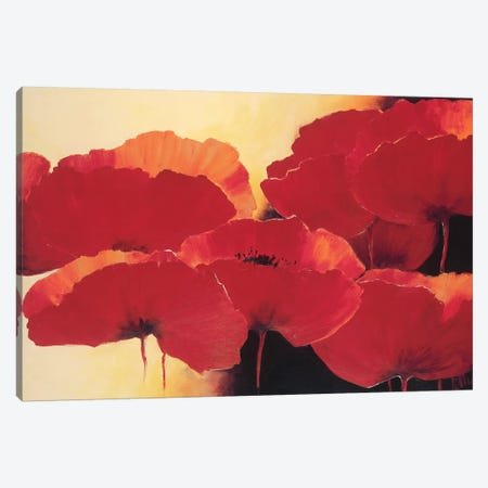 Absolute Beautiful II Canvas Print #JET4} by Jettie Roseboom Canvas Wall Art