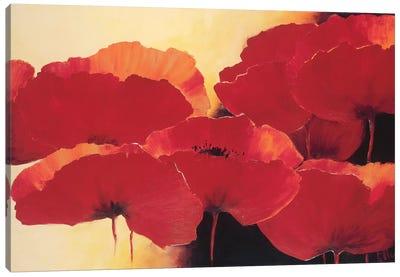 Absolute Beautiful II Canvas Art Print
