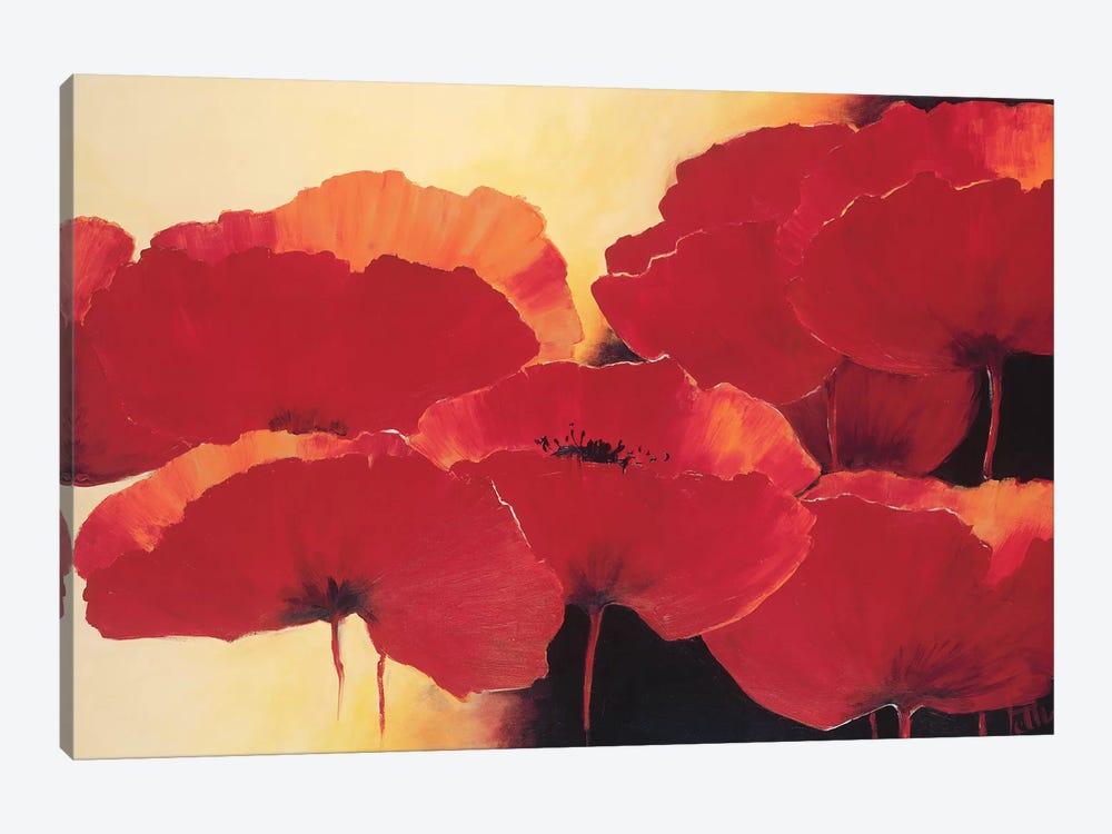 Absolute Beautiful II by Jettie Roseboom 1-piece Canvas Art