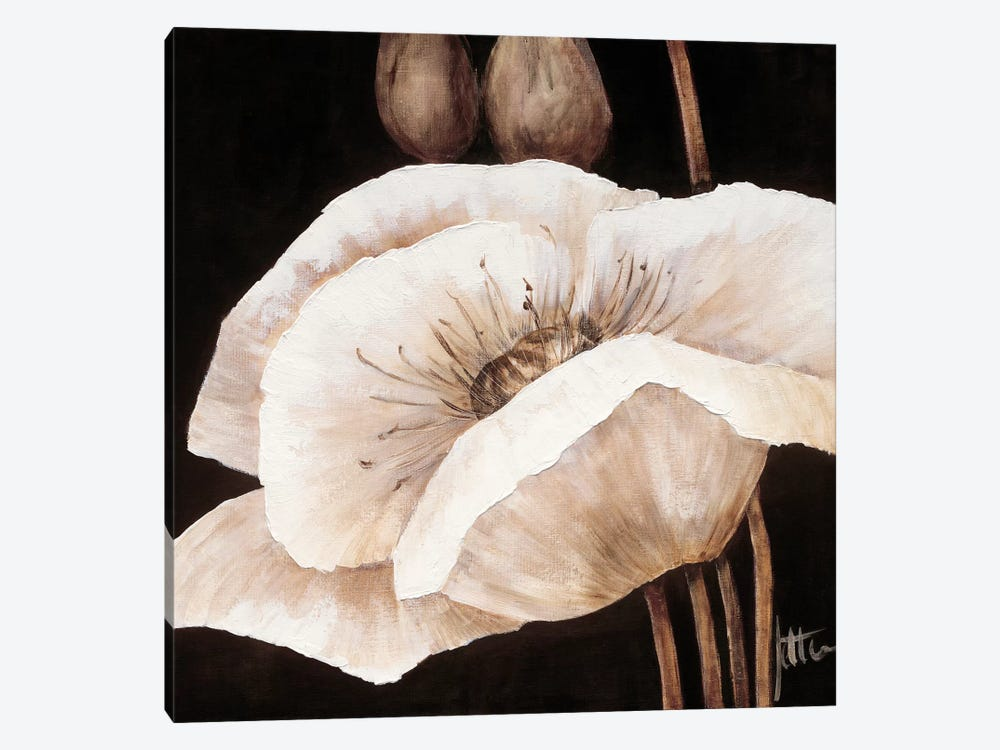 Amazing Poppies I by Jettie Roseboom 1-piece Canvas Print
